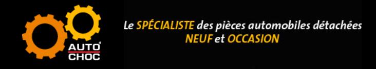 Autochoc vous propose au meilleur prix une large gamme de pièces détachées pour Renault Clio