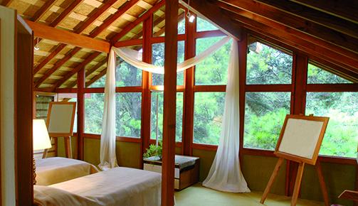 Fenêtre bois haute performance énergétique et esthétique ? Tryba !
